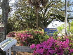 Franklin Square Park at Southport NC