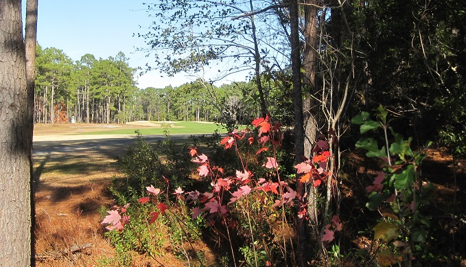 golf course at Boiling Spring Lakes NC