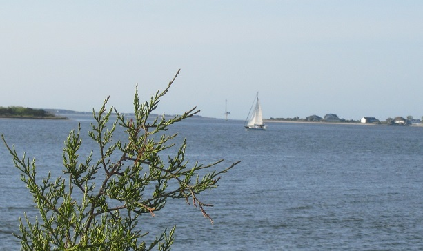sailboat on the Cape Fear River at Southport NC
