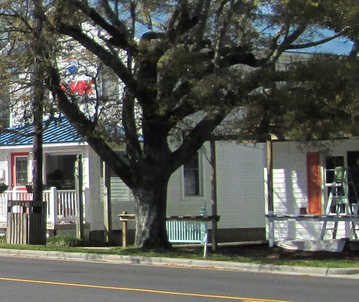 Southport NC shops and businesses