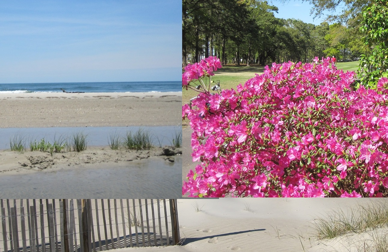 NC pictures communities beaches towns