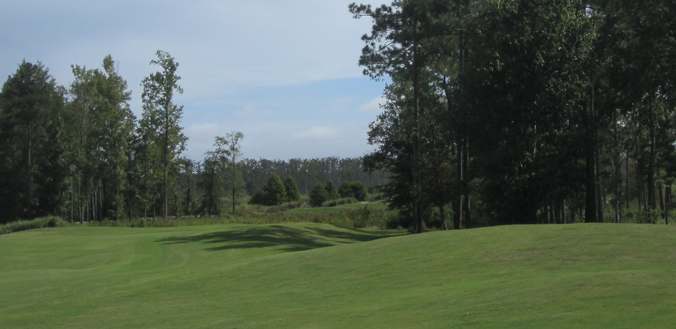 Southeastern NC Golf in the Leland area