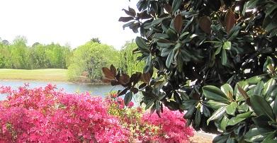 Magnolia Greens Leland NC